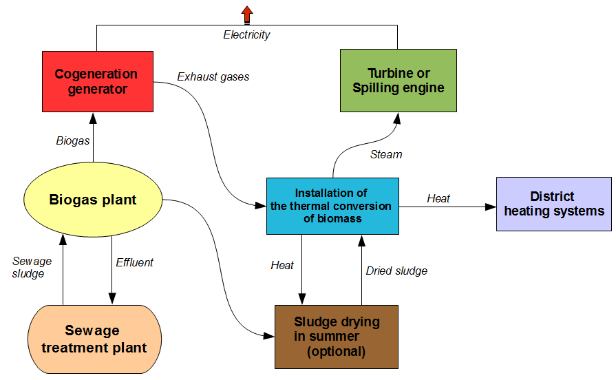 biomass energy diagram - photo #6